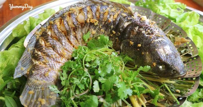 Cách làm món cá lóc hấp sả ngon vật vả ngon rã rời