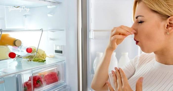 Bí quyết khử mùi hôi tủ lạnh vô cùng đơn giản và hiệu quả
