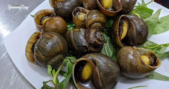 Hướng dẫn cách làm món ốc bươu hấp tiêu thơm ngon khó cưỡng